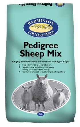 Pedigree Sheep Mix